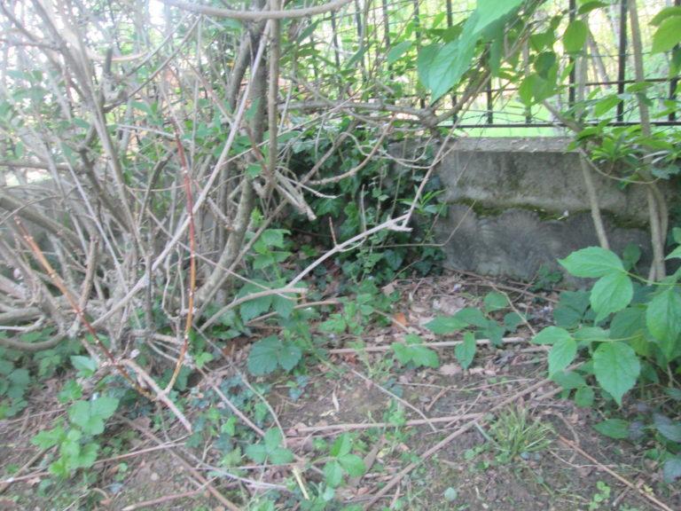4BSA - Alfio Varriano 5 - La tomba di Tilli